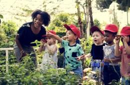 5 moestuin ideeën voor op school of thuis