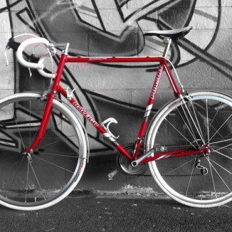 Raleigh Pursuit Race Bred
