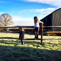 Oxney Organic Estate: Holiday Accomodation & Vineyard