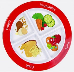 Super Healthy Kids MyPlate