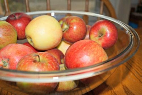 Apples ready for applesauce