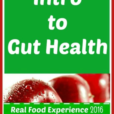 Real Food Experience Week 6: Intro to Gut Health