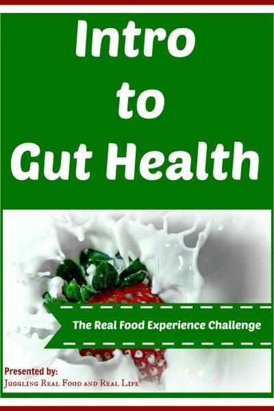 The Real Food Experience Challenge: Intro to Gut Health