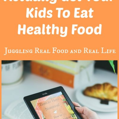 Zero To Hero Nutrition E-Book:  How To Actually Get Your Kids To Eat Healthy Food