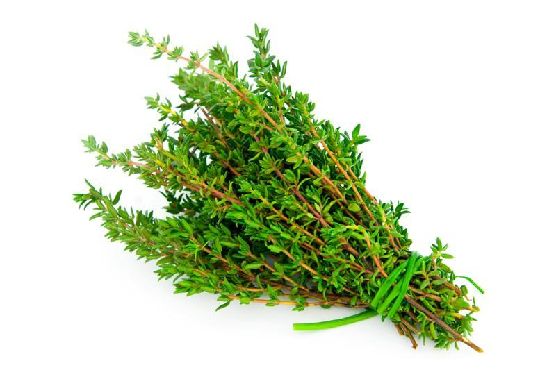 What You Probably Don't Know About Thyme