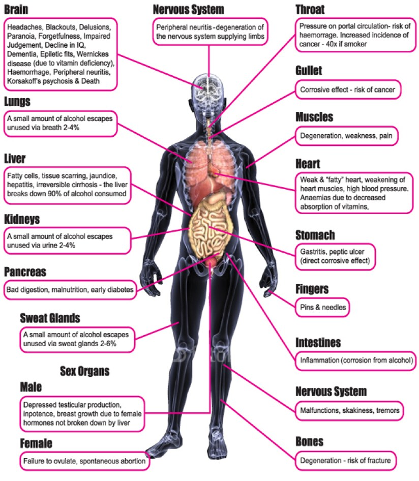 alcohol-effects
