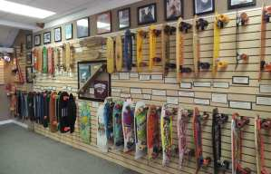 2014 Morro Bay Skateboard Museum Fundraising Campaign