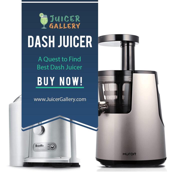 Dash Juicer Review – A Quest to Find Best Dash Juicer