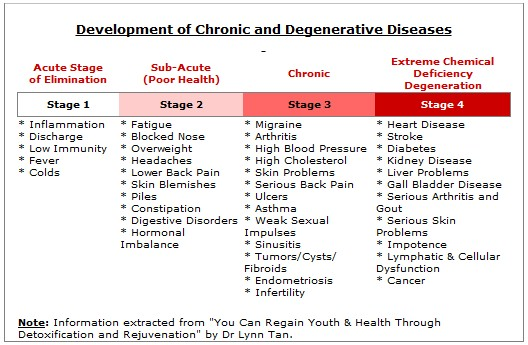 Basic holistic nutrition - the stages of cellular degeneration and chronic disease