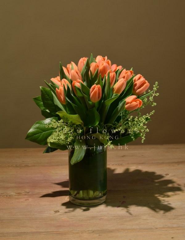 Orange TulipW