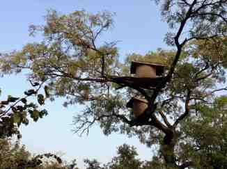 The Local Beekeepers Collective of Nigeria is a collective of local beekeepers in Nigeria. The collective was established to help local beekeepers gain access into the international market. Call +234 802 750 8837 for information