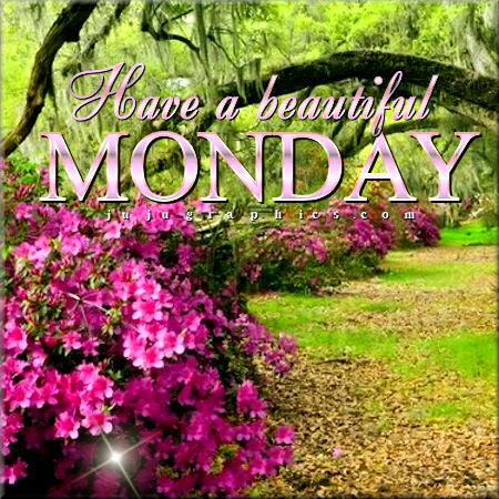 Have A Beautiful Monday 1 Graphics Quotes Comments Images Amp Greetings For Myspace Facebook
