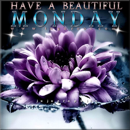 Have A Beautiful Monday 16 Graphics Quotes Comments Images Amp Greetings For Myspace