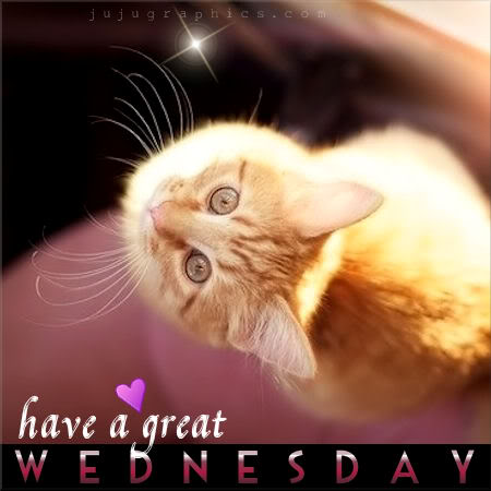 Have A Great Wednesday 14 Graphics Quotes Comments Images Amp Greetings For Myspace Facebook