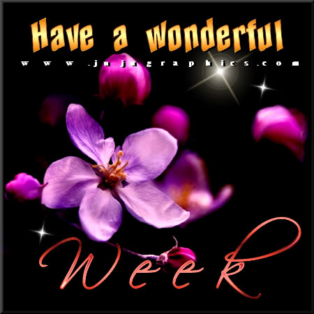 Have A Wonderful Week 6 Graphics Quotes Comments Images Amp Greetings For Myspace Facebook
