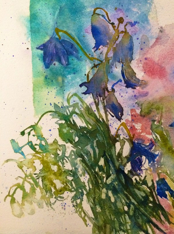 Watercolour flower study