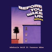 Adekunle Gold – Before You Wake Up (Remix) ft. Vanessa Mdee