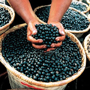 Acai Berry cleanses body