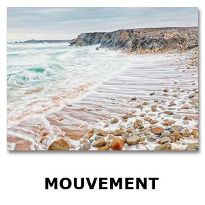 Modele-Images-pour-Thémes5