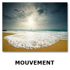 Modele-Images-pour-Thémes6