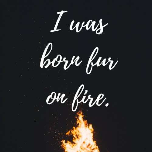 i-was-born-fur-on-fire