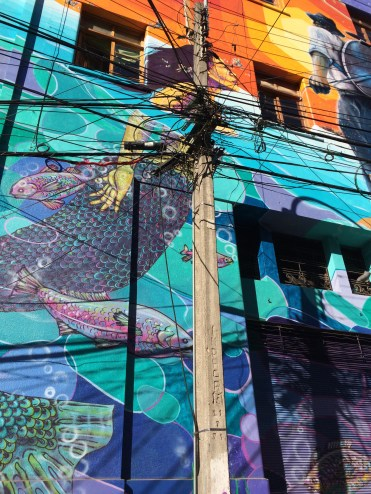 An incredible graffiti scarred by a jungle of phone lines