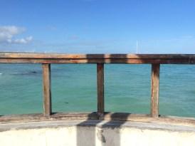 Puerto Ayora's pier, in the Santa Cruz island