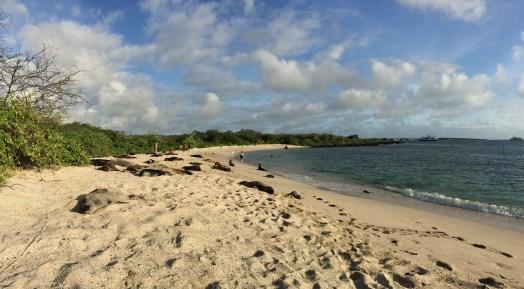 'Punta Carola' beach, in San Cristobal