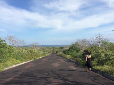 Everything is walking distance in the Galápagos, and most of the time you'll find yourself walking alone