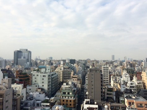 First impressions are not great but give it a second chance, because Tokyo is so much more than a tight mesh of concrete