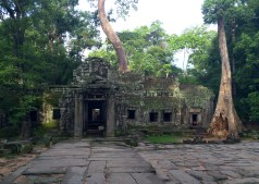 This is Ta Prohm, best known for its role in Lara Croft's Tomb Raider movie