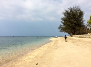 Infinite desert beaches leading to pristine waters