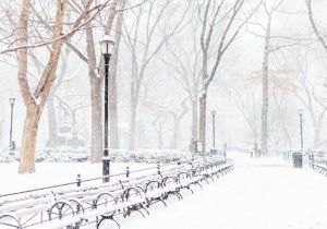 Park benches in the snow