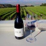 California wine country