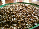 The beginning ingredients of our candy making.