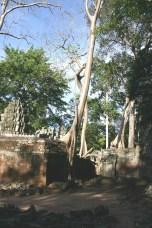 Ankor Wat II