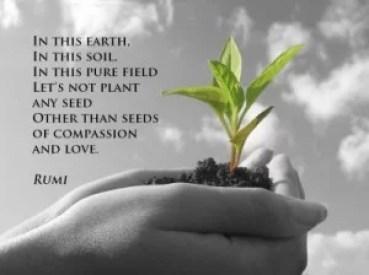 compassion-e1413843427959