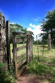 Paisagem rural 14
