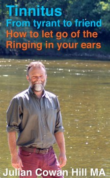 Tinnitus, From Tyrant to Friend: How to Let Go of the Ringing in Your Ears - Tinnitus Book