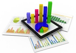 Market Feasibility Study - Product or Service