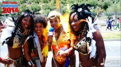 2014 Hollywood Carnival (Julianspromos) (12)