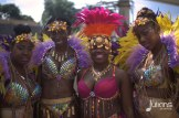 2014 West Indian Day Carnival (Julianspromos) (12)