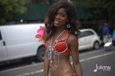 2014 West Indian Day Carnival (Julianspromos) (25)