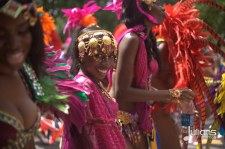 2014 West Indian Day Carnival (Julianspromos) (32)