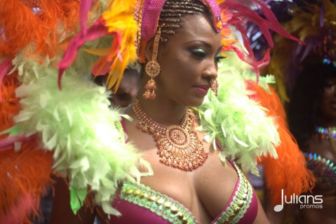 2014 West Indian Day Carnival (Julianspromos) (35)