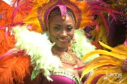 2014 West Indian Day Carnival (Julianspromos) (36)