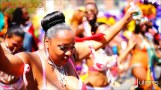 2014 West Indian Day Carnival Shots (Julianspromos) (10)