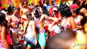 2014 West Indian Day Carnival Shots (Julianspromos) (13)