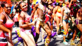 2014 West Indian Day Carnival Shots (Julianspromos) (15)