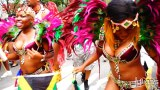 2014 West Indian Day Carnival Shots (Julianspromos) (19)